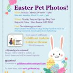 Easter Pet Photo GoldHeart Fundraiser