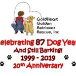GoldHeart 20th Anniversary Celebration Fundraiser